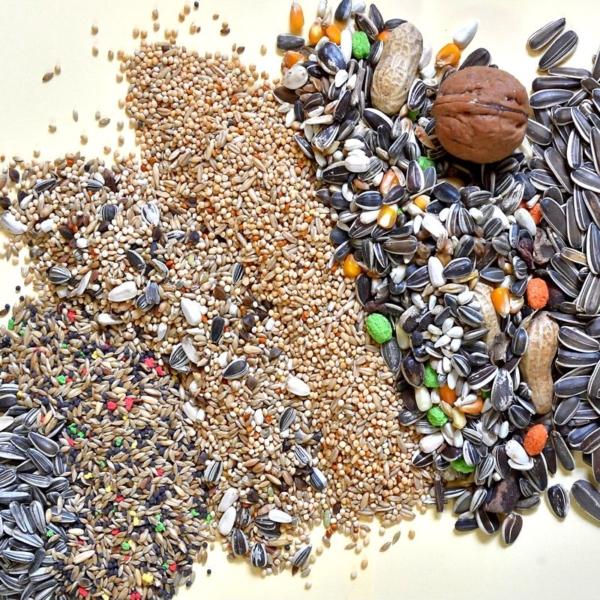 cereali di ogni tipo per ornitologia dal Molino Ballesio Torino