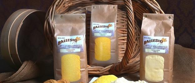 Polenta prodotta con il mais appena raccolto!